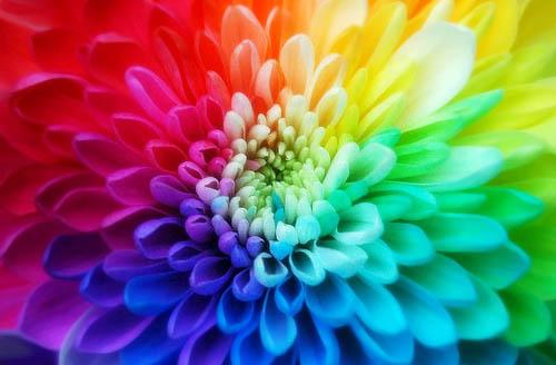 Colores para crear el ambiente apropiado y mejorar tú Salud