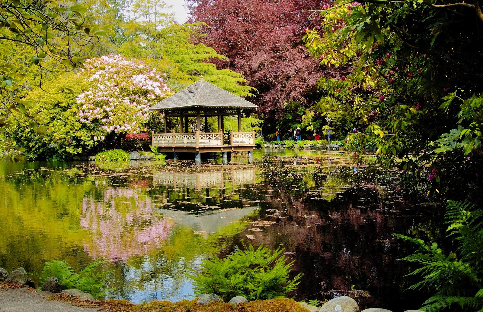 Cómo Diseñar tu Jardín Feng Shui