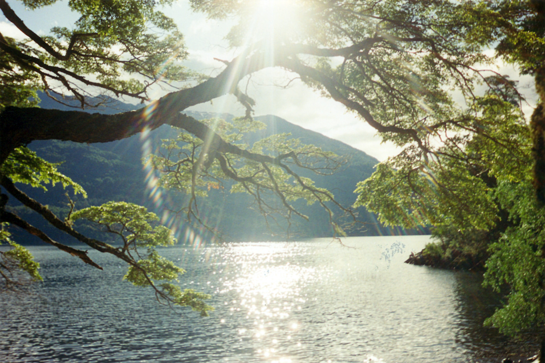 Señales de Buen Feng Shui a través de la Naturaleza