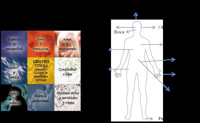 bagua y el cuerpo