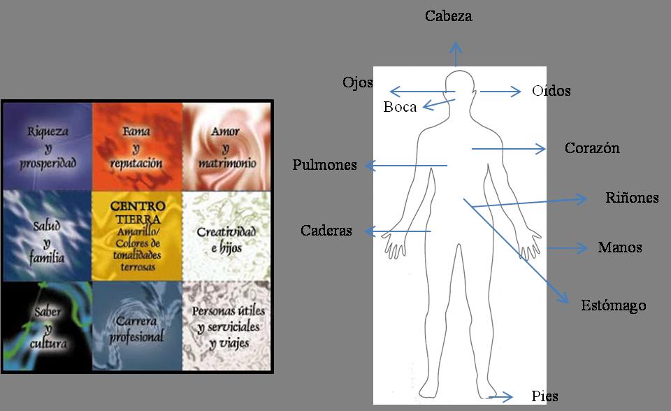 El mapa bagua feng shui de nuestro cuerpo for Como eliminar el desorden con el feng shui
