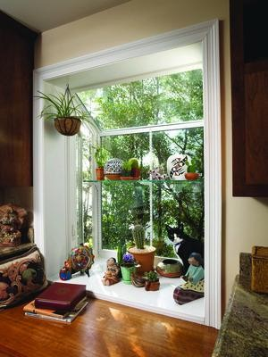 Feng shui ventanas - How to hang plants in front of windows ...