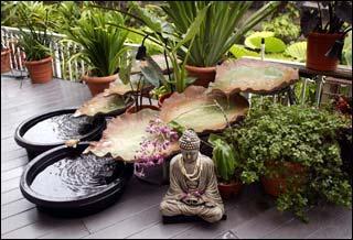 Feng Chui feng shui dónde colocar las de agua